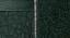 1977-1978 Green Carpet